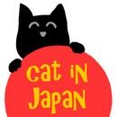 Suşi Seven Kedi