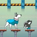 Uzaydaki Köpekler